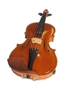 Viool: Wilco de Bruijn